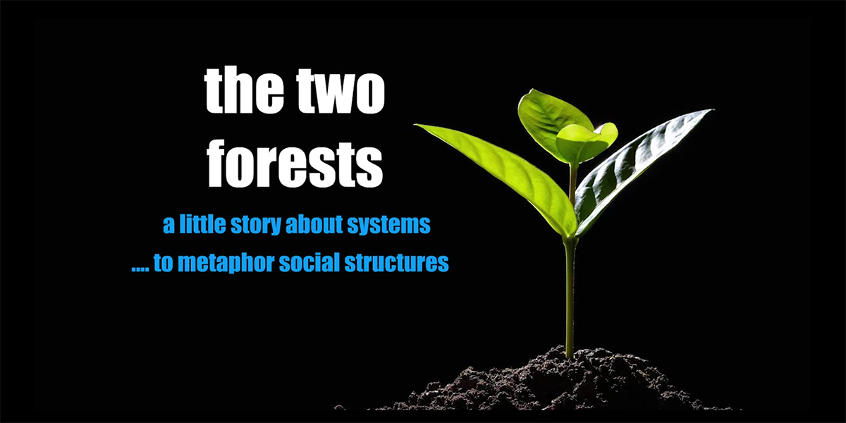 The_two_forests